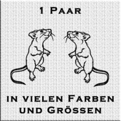 Ratten Paar Aufkleber Variante 1. Jetzt bestellen! ✅